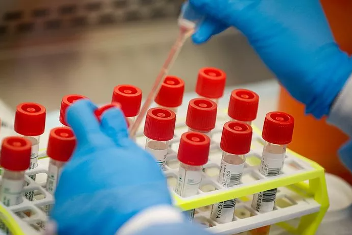 Avoid searching for coronavirus testing kits as they are unauthorised and most probably fake