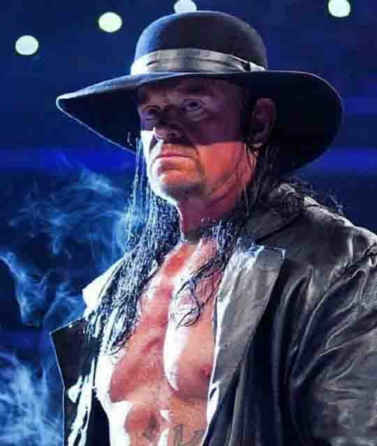 The Undertaker, Top WWE Pro-Wrestlers of All Time