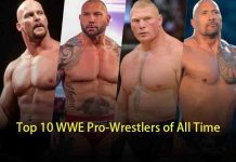 Top WWE Pro-Wrestlers of All Time
