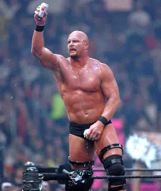 stone cold steve, Top WWE Pro-Wrestlers of All Time
